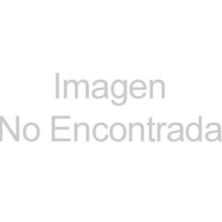 Farmacias Guadalajara regala asilo a perros callejeros en Nochebuena
